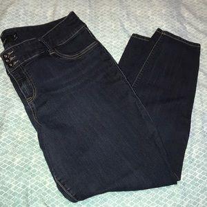 Torrid Denim Skinny Jeans, 20R